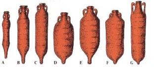 A-B-C- Anfora della Gallia o della Spagna (III - V Sec. d.C.); D-E-F- Anfora africana ( III - V Sec. d.C.) ; G- Anfora di tradizione Cos nella parte superiore (III - V Sec. d.C.)