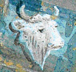Roma sotterranea rome underground - Finestre a bocca di lupo ...